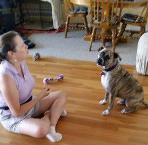 Wilmington Dog Trainer Lainie Johnston