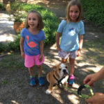 Puppy Training for Small Children